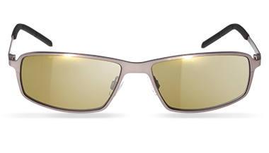 Drivewear Sunglasses, model: Fastlaner